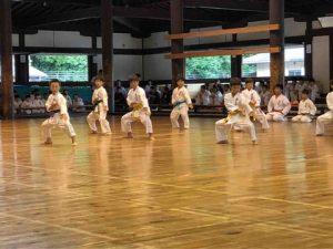 青少年武徳祭ピンアン二段の型