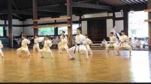 青少年武徳祭拳手法型